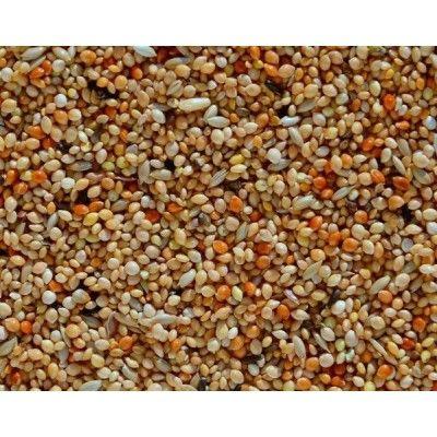 Amadina Guldová (1-10 kg rozvážené)