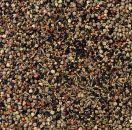 Deli Nature 94 - Wild Seeds